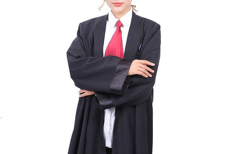 在一审阶段,律师的工作