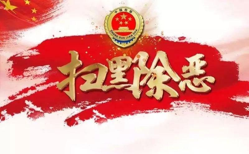 犯罪嫌疑人李某组织领导参加黑社会性质组织罪