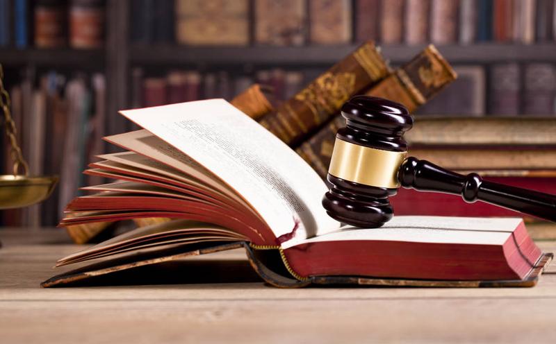 对于从犯,应当从轻、减轻处罚或者免除处罚